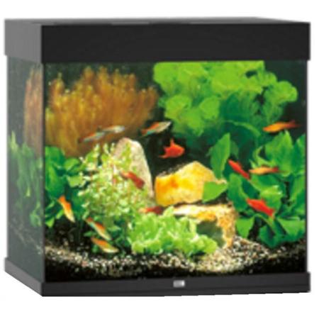 acquario-juwel-lido-120-nero