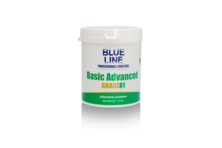Basic Advanced 81 Grade 130g